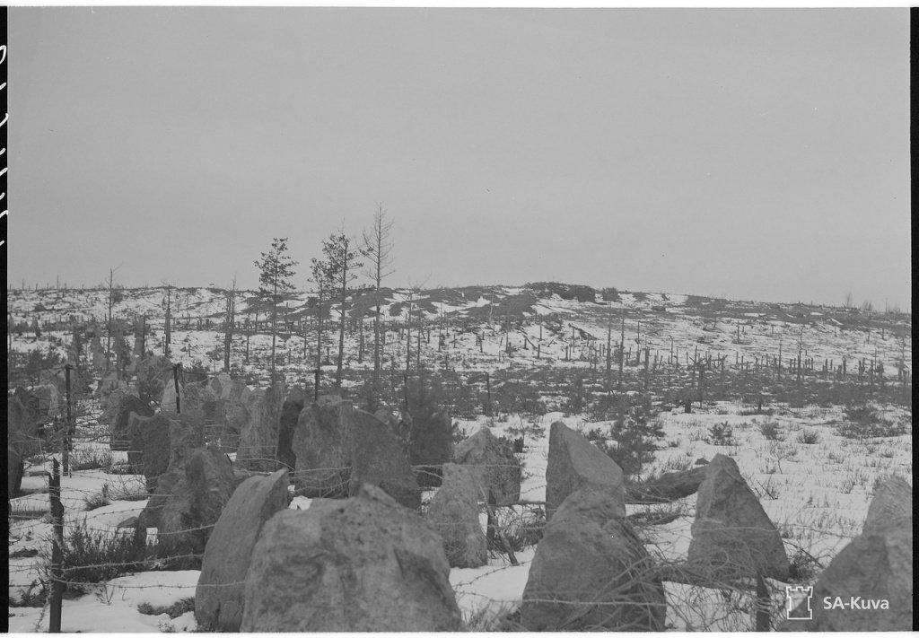 Советско-финская война (1939-1940)